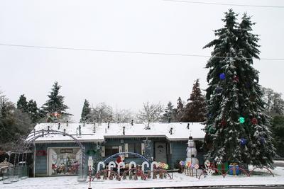 Snow 2016