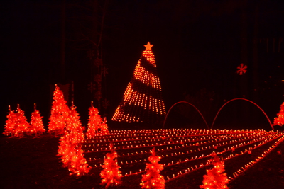 Burton Christmas Lights