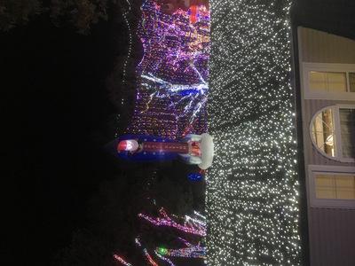 Stewart family Christmas lights roof
