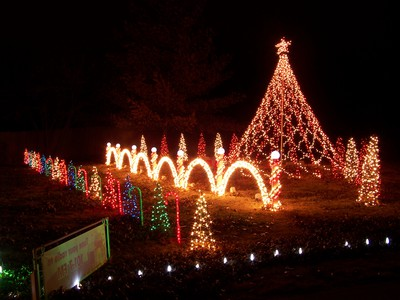 Williams Christmas Lights