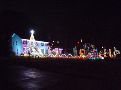 Woodstone Lights