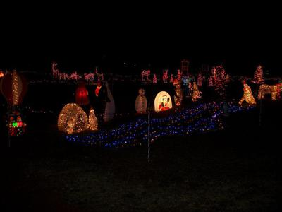 Turner Family Lights 4