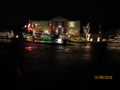 Christmas at the Roses