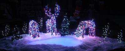 Deer Pond 2012